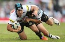 NRL Rd 8 - Sharks v Panthers